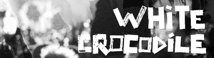 Visuel et logo de White Crocodile !
