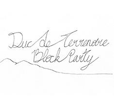 illustration de présentation de la soirée avec DUC DE TERRENOIRE BLOCK PARTY (live)