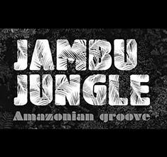 illustration de présentation de la soirée avec Jambu Jungle et DJ. Ricardo John