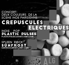 illustration de présentation de la soirée avec Crépuscules électriqueset Plastic Pulses et Sunfrost