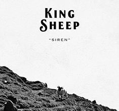 illustration de présentation de la soirée avec Indie Night et King Sheep et Polar System & Anton (dj set)